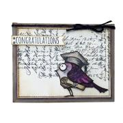 Congrats, Grad Bird Card