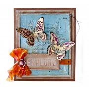 Explore Butterflies Frame