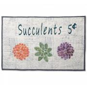 Succulents Wall Hanging