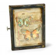 Papillon Shadow Box