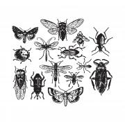 Entomology by Tim Holtz - Cling Mount Stamps - Stampers Anonymous