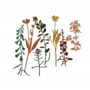 Sizzix Thinlits Die Set 7PK - Wildflowers #2 by Tim Holtz