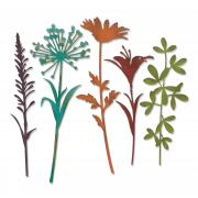 Sizzix Thinlits Die Set 5PK - Wildflower Stems #2 by Tim Holtz