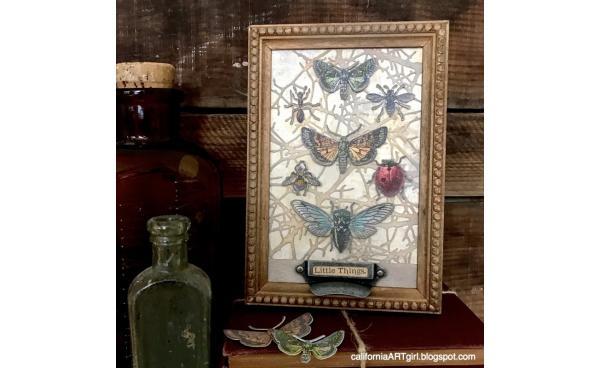 Detailed and Intricate Entomology Panel DIY