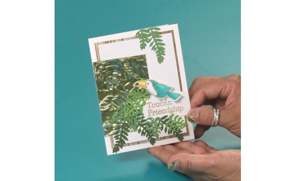 Add This Sweet Toucan Of Friendship Card To Your Card Stash