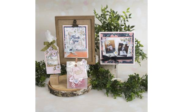 David Tutera Greetings Stamp & Die Set Bundle On HSN! #ItsFunHere