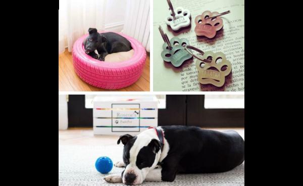 Ultimate Pet DIYs!