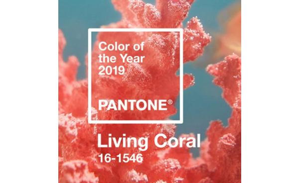 2019 Trend Alert - Pantone Color of the Year!